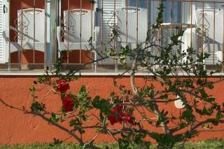facilities diona ramona balcony